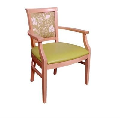 Carnaby Arm Chair